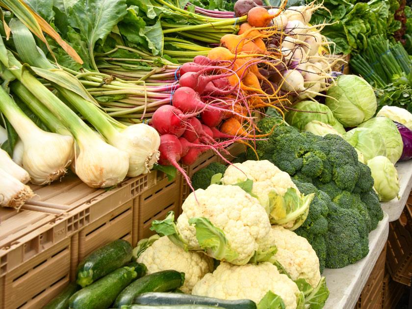 Farm Fresh Markets
